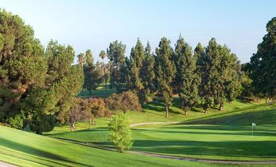 Aea Golf Club Home Page